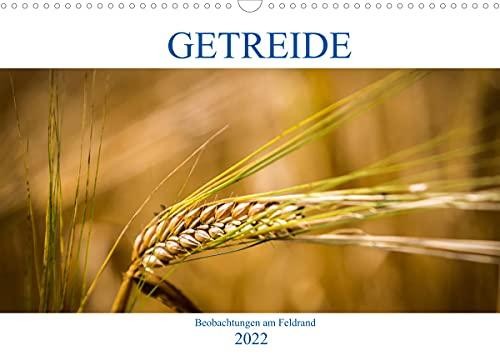 Getreide - Beobachtungen am Feldrand (Wandkalender 2022 DIN A3 quer)