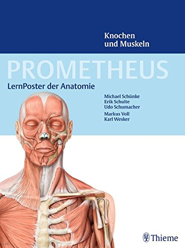 PROMETHEUS LernPoster der Anatomie, Knochen und Muskeln