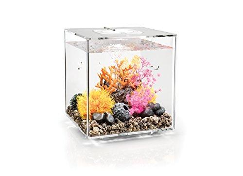 OASE biOrb CUBE 30 LED Aquarium, 30 Liter - Aquarien Komplett-Set mit LED Beleuchtung und patentiertem Filter-System, Acryl-Becken in Transparent