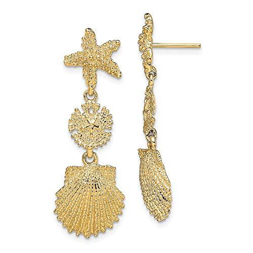 14k oro giallo stella marina, dollaro di sabbia, Scallop Shell ciondola gli orecchini