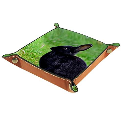 Cubitera plegable de piel sintética con ruedas para RPG Dice Gaming D & D y otros juegos de mesa, verde del conejo negro, 16 x 16 cm