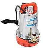 RBSD Bomba de Agua, Antióxido, Resistente al Desgaste, Bomba de Agua de riego, Bomba de 12V, Adecuado para baterías de 12V, para Bomba de Agua Sumergible Bomba de Agua