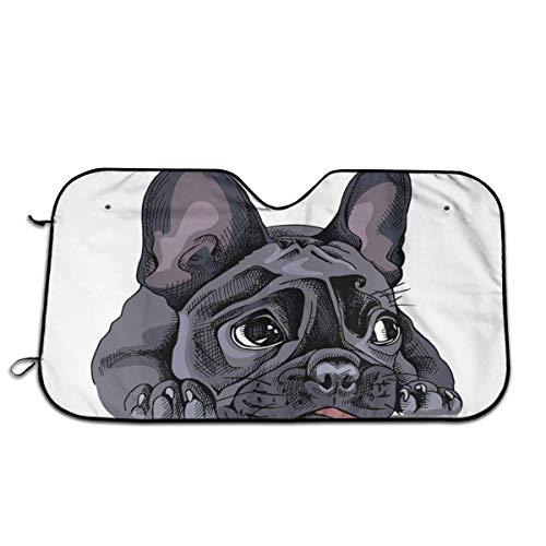 DGbanma Windshield Sun Shade,Foldable Car Sun Shade for Windshield Keep Your Vehicle Cool Sad French Bulldog Portrait Dog Puppy Funny Hand Cute