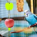 Welltobuy Porta Cibo per Uccelli Portafrutta per Animali Domestici Spiedino di Frutta di Pappagalli Mangiatoia per Polli da Compagnia Mangiatoia per Pappagalli
