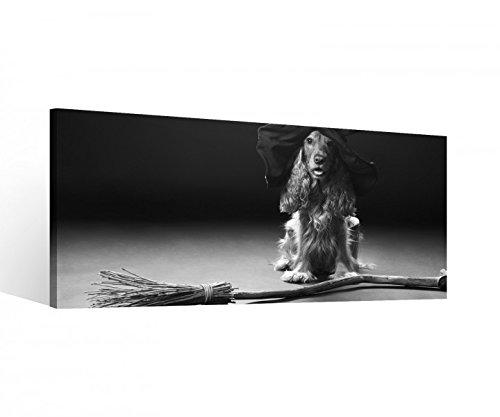 Leinwand 1Tlg Hund Hexe Hut Hexenbesen Halloween Schwarz weiß Leinwandbilder Bild Bilder Holz fertig gerahmt 9S520, 1 Tlg BxH:80x40cm