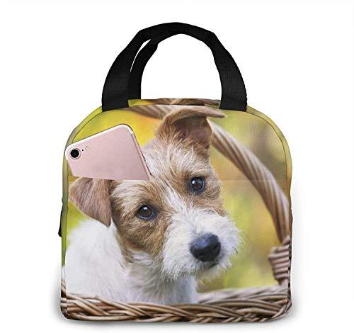 Puppy In A Basket Lunch Bag Tote Bag Fiambrera Fiambrera Aislada Fiambrera Para Mujer Hombre