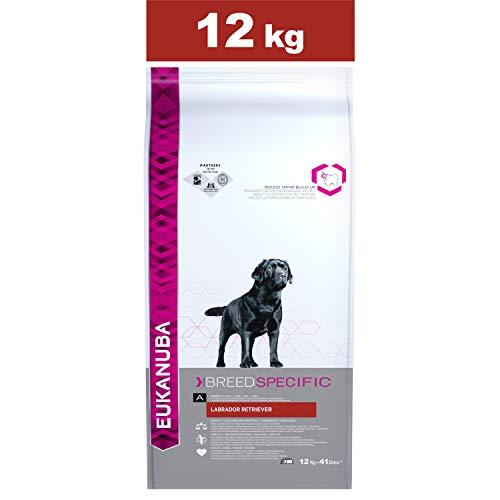 Eukanuba Croquettes Premium pour Chiens Labrador, Curly Coated Retriever, Retriever de la baie de Chesapeake - Recommandé par les vétérinaires - 100% Complètes et Equilibrées - Au Poulet - 12kg