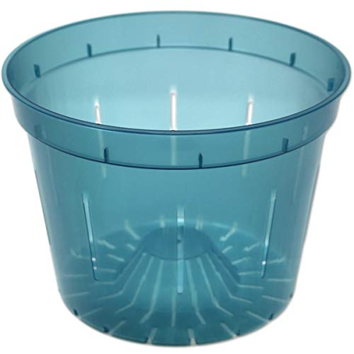 rePotme 8' Slotted Clear Orchid Pots 3 Pack (Blue Sapphire)