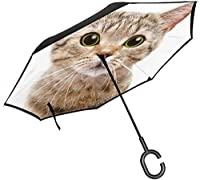 逆傘かわいいサプライズキャット2層倒立傘C字型ハンドルストレート傘車の雨屋外用