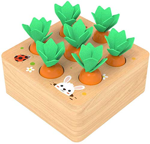 Ancaixin Wooden Toys for 1 Year Old Boys...