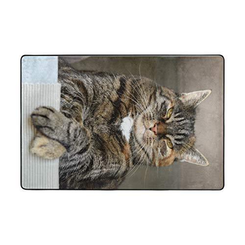 Fantazio Teppiche mit Katzenmotiv, Schwarz / Orange / Grau, gerade, für Ecken und Kanten, idealer Teppichstopper für Küche/Badezimmer, Polyester, 1, 72 x 48 inch