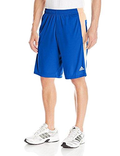 adidas Performance Men's Aeroknit Shorts, Collegiate Royal Blue/Flash Orange, Medium