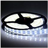 LEDENET 5M Double Row 600LEDs SMD 5050 LED Flexible Strip Lighting DC 12V Cold...