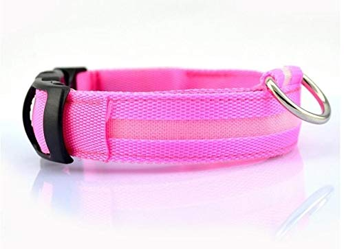 Zcm Haustierhalsband Nylon-LED-Haustier-Hundehalsband, Nacht-Sicherheits-Blitzen-Glühen im dunklen Hundeleine, Hunde Luminous Fluorescent Halsbänder Pet Supplies (Color : Collar Pink, Size : XL)