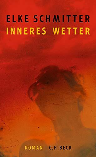 Buchseite und Rezensionen zu 'Inneres Wetter: Roman' von Elke Schmitter