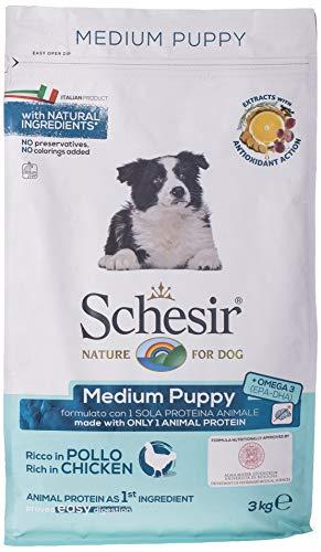 Schesir Dog Medium Puppy Huhn, Hundefutter trocken für Welpen mittelgroßer Rassen, Beutel, 3 kg