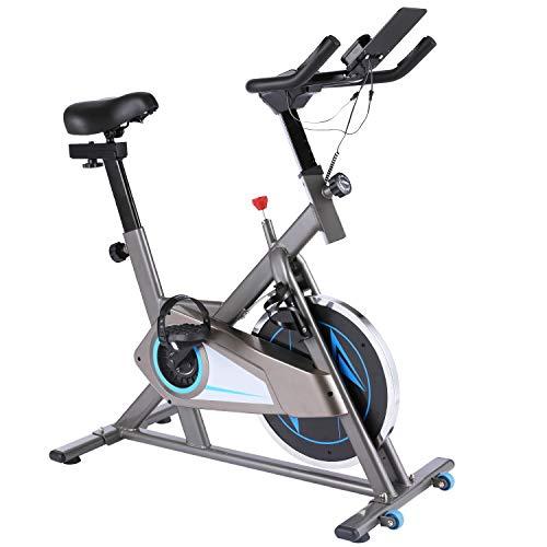 Ancheer Bicicleta Estática de Spinning Bicicleta Interior Volante 10kg, Pantalla LCD, Sillín Ajustable, Máximo Usuario130 kg (Plateado)