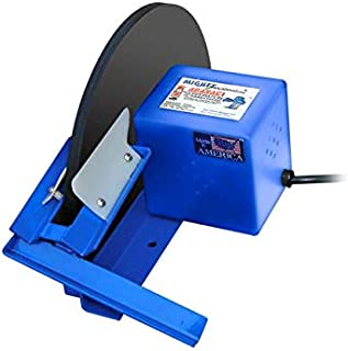 TRAMP OIL DISK SKIMMER 12