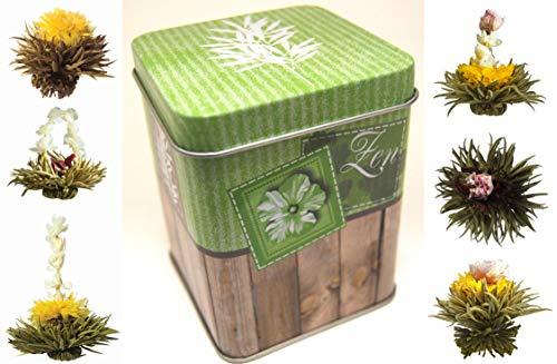 """6er-Dose Weißtee-Teeblumen""""White Zen"""" - Teerosen/Teeblüten in edler Probier- und Geschenkdose, inkl. Bedienungsanleitung, hochwertigster weißer Erblühtee mit echten Blüten … …"""