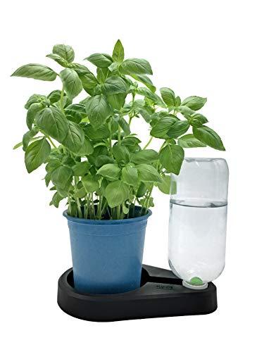 FLORIS Base für Kräuter. Natürliche Bewässerung für Küchenkräuter im Kulturtopf (Schwarz)