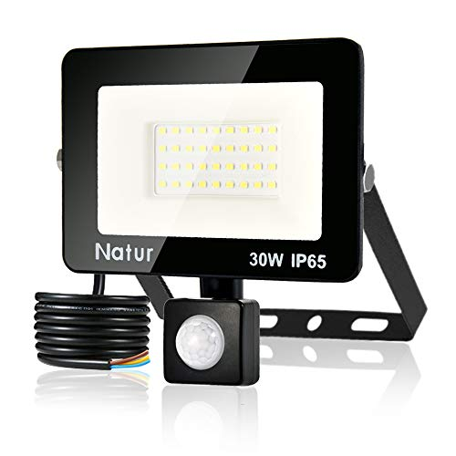 30W Foco LED Exterior con Sensor Movimiento, bapro Proyector LED Alto Brillo 3000 lúmen, IP65 Impermeable Floodlight Blanco Frío 6000K Iluminación de Exterior Seguridad para Jardín, Garaje, Fábrica