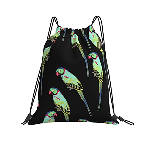 Bolsa clásica con cordón Alexandrine Parrot Gym Sack Bag Mochila de poliéster para hombres y mujeres