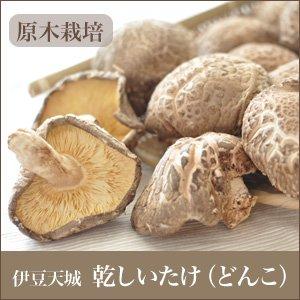 伊豆 中葉厚肉 小柳津さんちの 原木 栽培 「乾しいたけ」 210g
