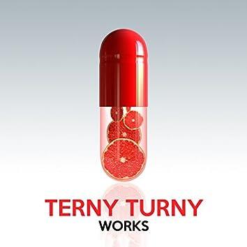Terny Turny Works
