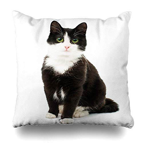 Dekorative Kissenbezüge Kissenbezüge, Black Amp White Cat Sit On White Isolierte Hintergrundmuster Doppelseitige dekorative Home Decor Kissenbezug