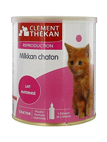 Clément Thékan Milkkan Chaton