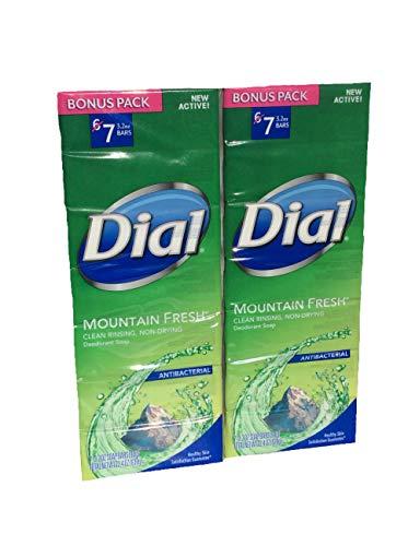 dial mountain fresh bar soap - 4