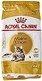 Oferta Ração Maine Coon Royal Canin para Gatos - 4kg por R$ 189.99