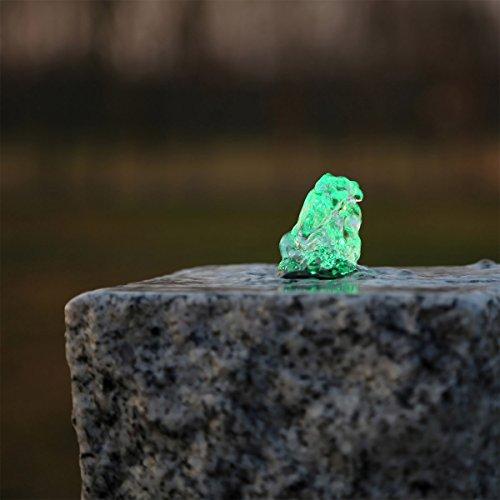 CLGarden LED Ring grün Beleuchtung für Springbrunnen Gartenbrunnen Brunnen Wasserspiel Quellstein Bachlauf Teich