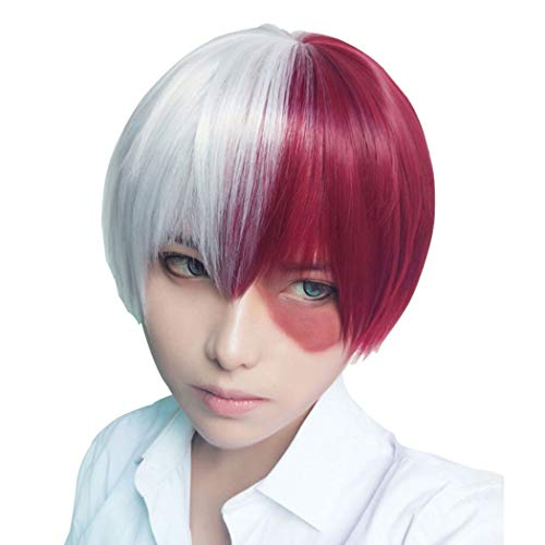 Qaccf Short Straight Half Silver White and Half Half Dark Red Cosplay wig (Silver White and Red)