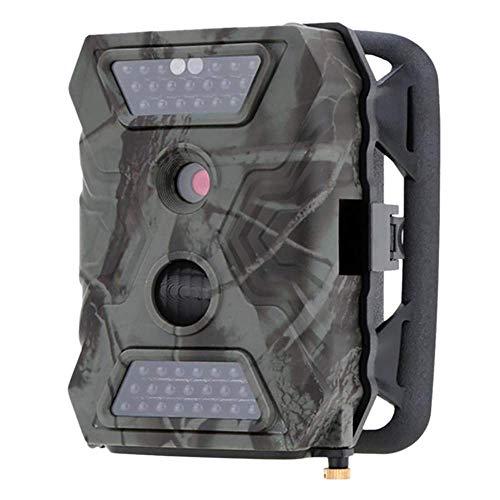 Wildlife Trail Cameras 12MP 1080P con visión nocturna 65...