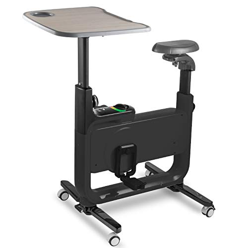 Happibuy Chair Desk Upright Indoor Cycling Bike