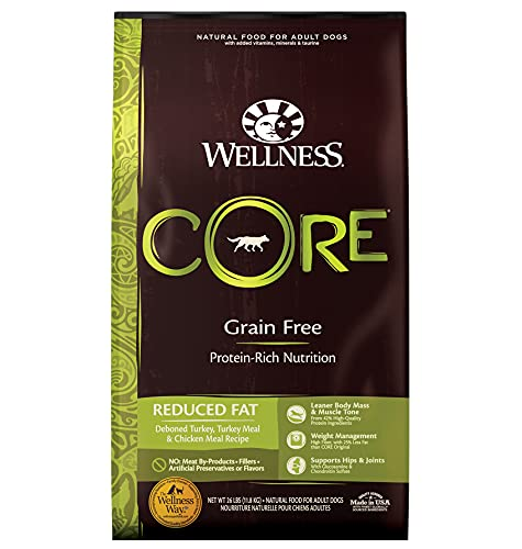 Wellness CORE Natural Grain Free Dry Dog Food,...