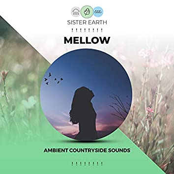 ! ! ! ! ! ! ! ! Mellow Ambient Countryside Sounds ! ! ! ! ! ! ! !