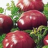 1 Bolsa De Semillas De Tomate Morado NO OGM Semillas De Tomate Productivas Prolíficas De Alto Rendimiento Para Semillas De Jardín Semillas de tomate morado
