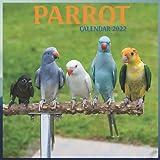 Parrot Calendar 2022 - 12 Month Calendar: Cute Parrot Photos Monthly Calendar 2022