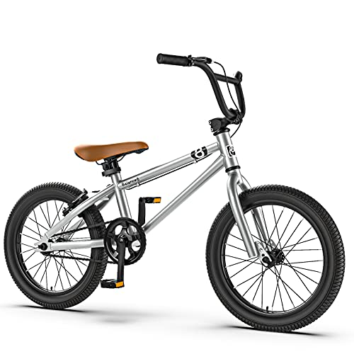 """MIAOYO 16/20 Pulgadas Bicicleta Infantil,Boys Girls BMX,Asiento Ajustable Bicicleta Montaña con Ruedas Auxiliares(Doble V-Freno),Plata,20"""""""