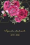 Agenda Etudiant 2019 - 2020: Agenda Journalier Scolaire, Agenda semainier et Calendrier 2019 2020   Novembre 2019 à Décembre 2020