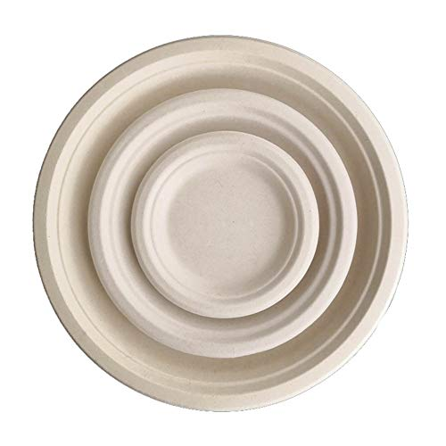 WYING 100 Packungen 7 Zoll Abbaubar Umweltschutz Einmal Tablett Teller zum Grill Picknick Party Weihnachten