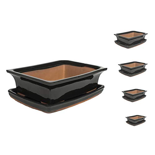 Keramik Bonsaischale in verschiedenen Groessen -Schwarz- hochwertiger Blumentopf mit Unterteller/Schale - geflammt für drinnen und draussen, oval - Indoor/Outdoor (24 x 18 x7 cm)