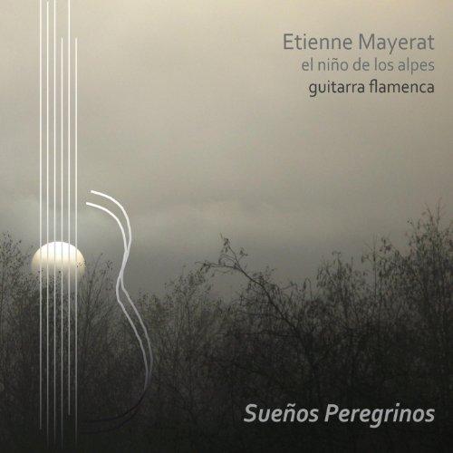El Niño Ricardo Guitarra Flamenca