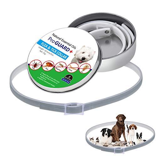 Le collier de chien anti puces et tiques Klinkamz