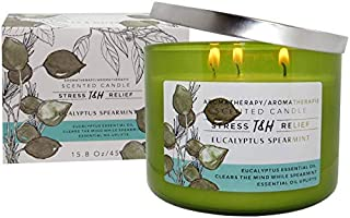 T&H Stress Relief Aromatherapy Candles All Natural Soy Wax and Essential Oils Long Lasting 16 Ounce 80 Hour Burn (Eucalyptus Spearmint)