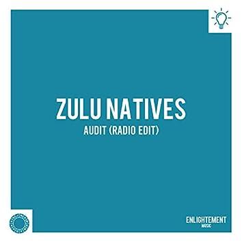 Audit (Radio Edit)