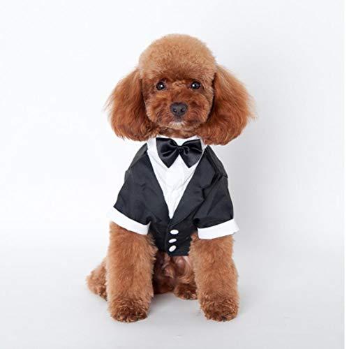 PiniceCore Perro Trajes El Perrito Ropa del Banquete de Boda del Perro casero del Smoking de la Pajarita del Animal doméstico del Perro Ropa para Perros Ropa Smoking Perro M