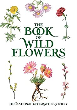 The Book of Wild Flowers  Color Plates of 250 Wild Flowers and Grasses